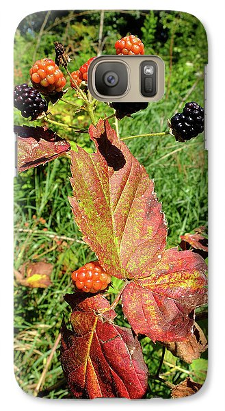 Galaxy Case featuring the photograph Summer Remnants by Scott Kingery
