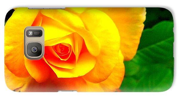 Galaxy Case featuring the photograph Summer Rose by Garnett Jaeger
