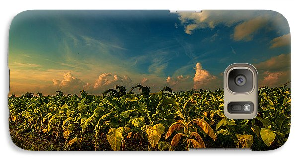 Galaxy Case featuring the photograph Summer Tobacco  by John Harding