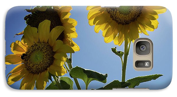 Galaxy Case featuring the photograph Sun Flowers by Brian Jones