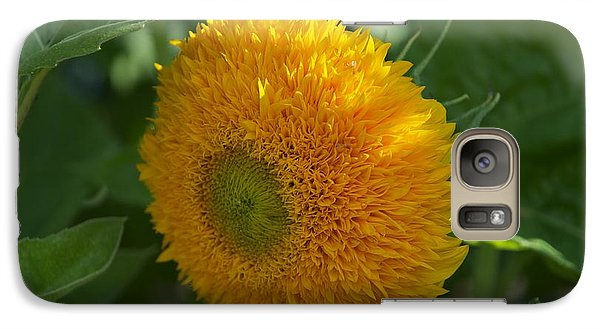 Galaxy Case featuring the photograph Sun by Joseph Yarbrough