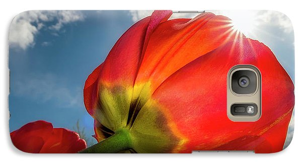 Galaxy S7 Case featuring the photograph Sunbeams And Tulips by Adam Romanowicz
