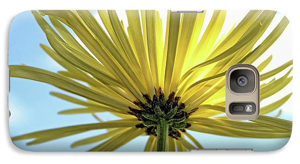 Galaxy Case featuring the photograph Sunburst by Judy Vincent