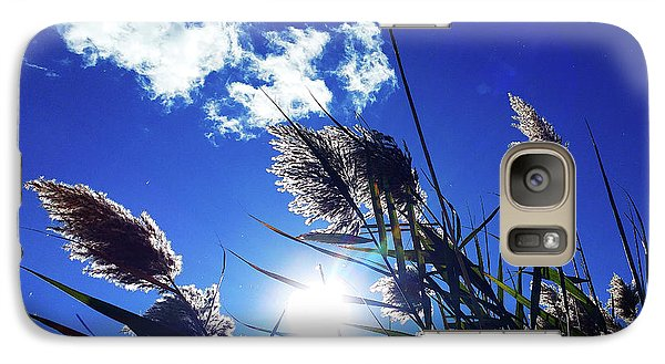 Sunburst Reeds Galaxy S7 Case