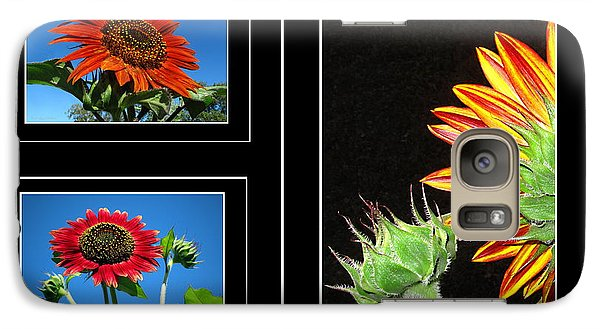 Galaxy Case featuring the photograph Sunflower Collage by Joyce Dickens