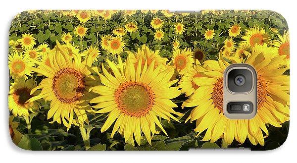 Galaxy Case featuring the photograph Sunflower Faces by Ann Bridges