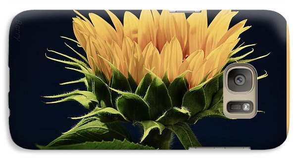 Galaxy Case featuring the photograph Sunflower Foliage And Petals by Chris Berry