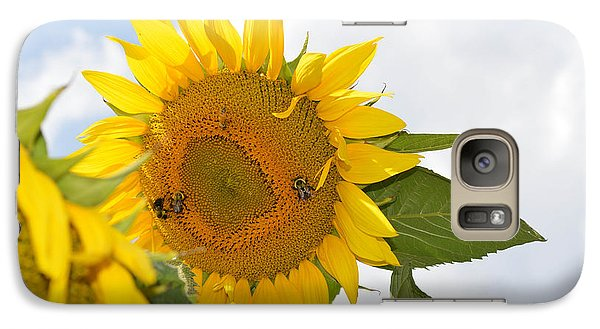 Galaxy Case featuring the photograph Sunflower by Linda Geiger