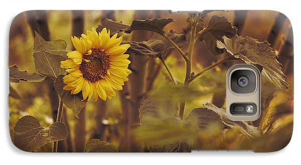 Galaxy Case featuring the photograph Sunflower Sentry by Douglas MooreZart