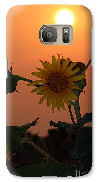 Galaxy Case featuring the photograph Sunflowers At Sunset by Kathy  White