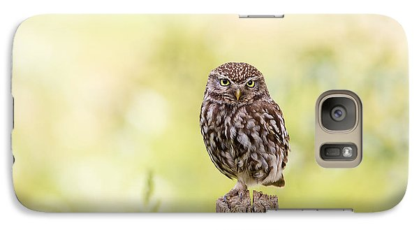 Sunken In Thoughts - Staring Little Owl Galaxy S7 Case