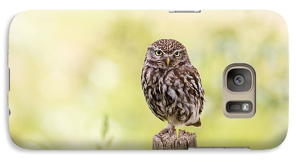 Sunken In Thoughts - Staring Little Owl Galaxy S7 Case by Roeselien Raimond