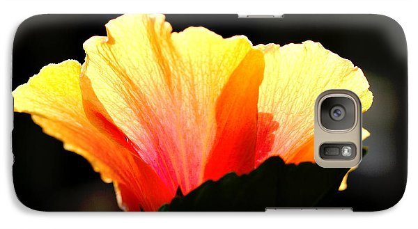 Galaxy Case featuring the photograph Sunlit Hibiscus by Diane Merkle