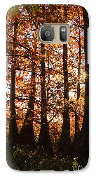 Galaxy Case featuring the photograph Sunlit Trees At Lake Murray by Tamyra Ayles