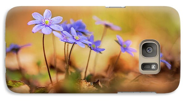 Galaxy Case featuring the photograph Sunny Afternoon With Liverworts by Jaroslaw Blaminsky
