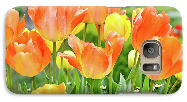 Galaxy Case featuring the photograph Sunny Tulips by David Lawson