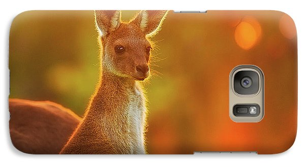 Galaxy Case featuring the photograph Sunset Joey, Yanchep National Park by Dave Catley