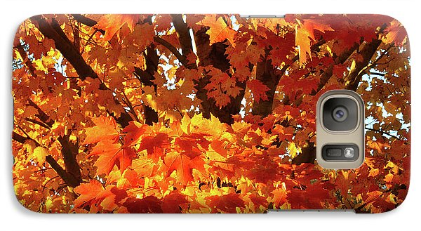 Galaxy Case featuring the photograph Sunset On Sugar Maple by Ray Mathis