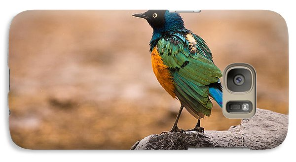 Superb Starling Galaxy Case by Adam Romanowicz