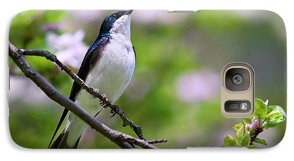Swallow Song Galaxy S7 Case