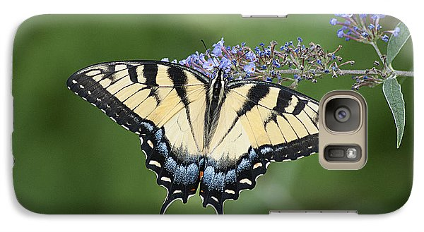 Galaxy Case featuring the photograph Swallowtail 20120723_24a by Tina Hopkins