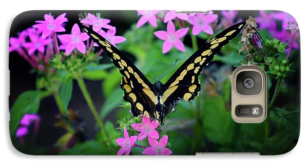 Galaxy Case featuring the photograph Swallowtail Butterfly Rests On Pink Flowers by Toni Hopper