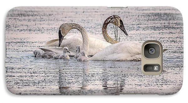 Galaxy Case featuring the photograph Swan Family by Kelly Marquardt
