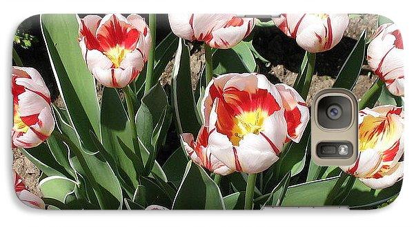 Galaxy Case featuring the photograph Swanhurst Tulips by Jolanta Anna Karolska