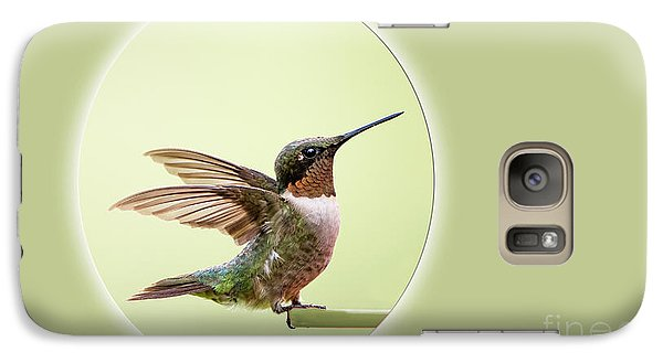 Galaxy Case featuring the photograph Sweet Little Hummingbird by Bonnie Barry