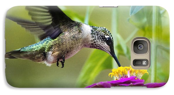 Sweet Success Hummingbird Square Galaxy S7 Case by Christina Rollo