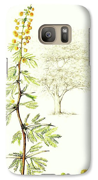 Galaxy Case featuring the painting Sweet Thorn Botanical Illustration by Heidi Kriel