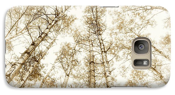 Galaxy Case featuring the photograph Tall Aspens by Elena Elisseeva