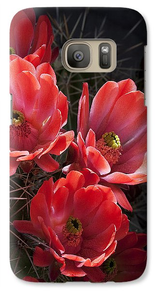 Galaxy Case featuring the photograph Tangerine Cactus Flower by Phyllis Denton