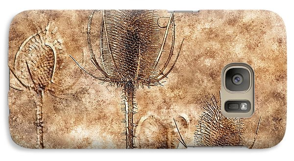 Galaxy Case featuring the photograph Teasel Heads  by Dariusz Gudowicz