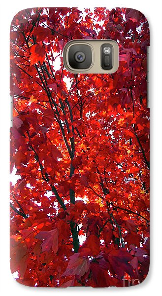 Galaxy Case featuring the photograph Tennessee Trees 3 by Jeanne Forsythe