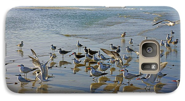 Galaxy Case featuring the photograph Terns And Seagulls On The Beach In Naples, Fl by Robb Stan
