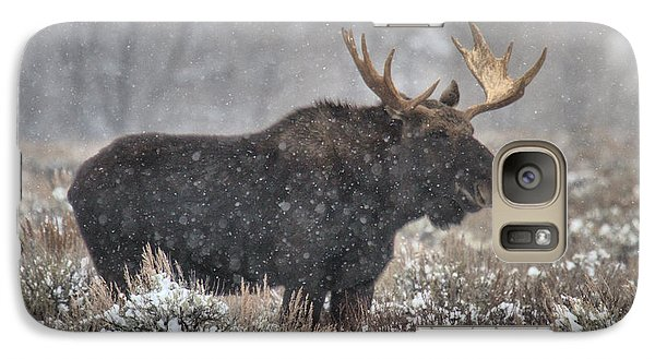 Galaxy Case featuring the photograph Teton Snowy Moose by Adam Jewell