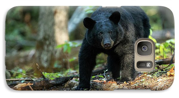 Galaxy Case featuring the photograph The Bear by Everet Regal
