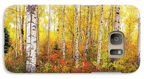 Galaxy Case featuring the photograph The Beauty Of The Autumn Forest by Tim Reaves