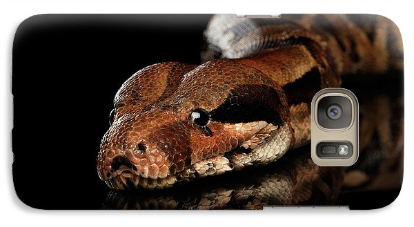 The Boa Constrictors, Isolated On Black Background Galaxy S7 Case