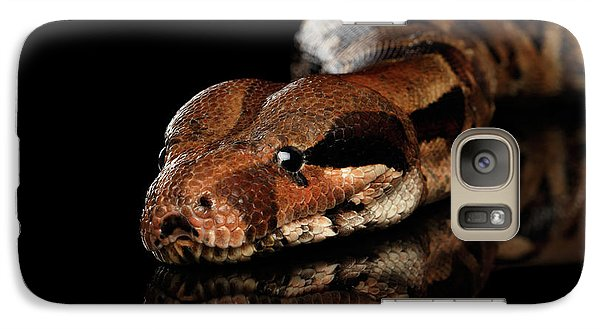 The Boa Constrictors, Isolated On Black Background Galaxy S7 Case by Sergey Taran