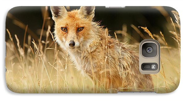 The Catcher In The Grass - Wild Red Fox Galaxy S7 Case