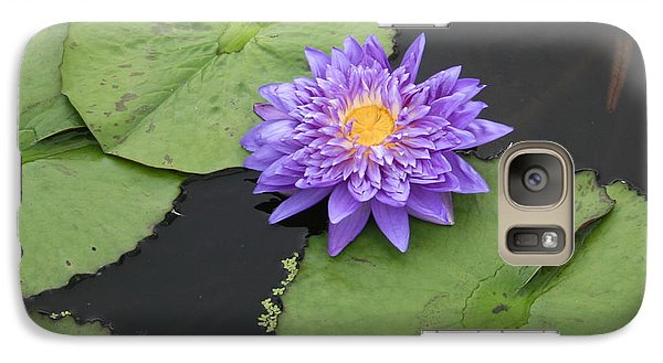 Galaxy Case featuring the photograph The Color Of Splendor by David Dunham