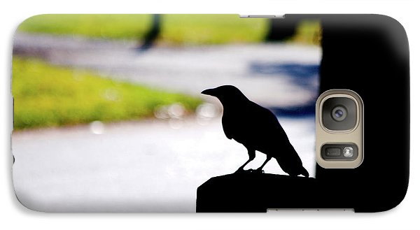 Galaxy Case featuring the photograph The Crow Awaits by Karol Livote