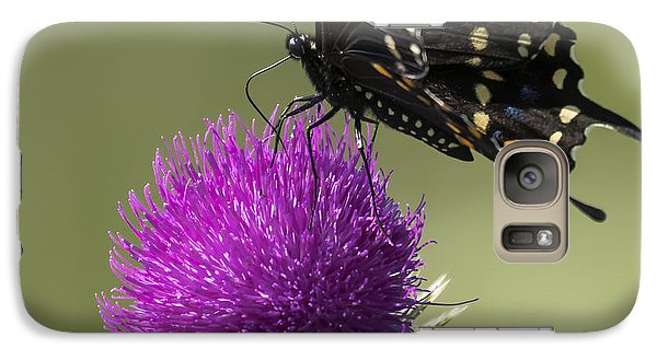 The Eastern Black Swallowtail  Galaxy S7 Case by Ricky L Jones