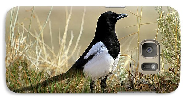 Magpies Galaxy S7 Case - The Elusive Magpie by Donna Kennedy