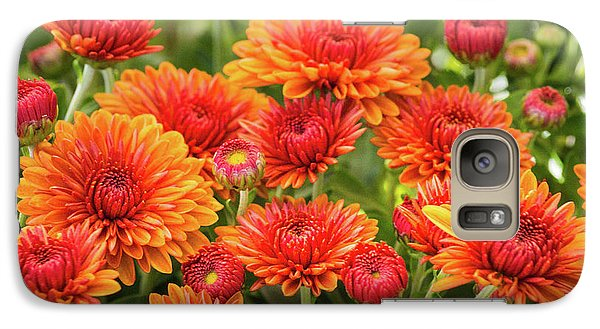 Galaxy S7 Case featuring the photograph The Fall Bloom by Bill Pevlor