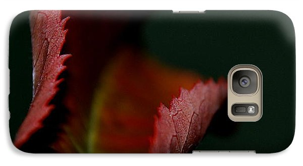 Galaxy Case featuring the photograph The First Day Of Fall by Marija Djedovic