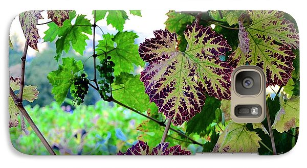 Galaxy Case featuring the photograph The Grape Vine by Corinne Rhode