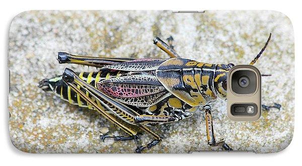 The Hopper Grasshopper Art Galaxy S7 Case